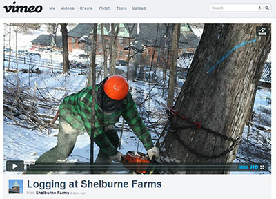 Logging at the Farm Video
