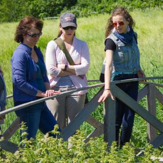 foraging with susan staley