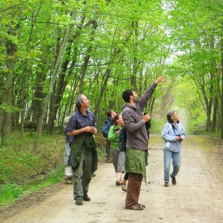natural-history-and-birding-weekend-participants-on-trail