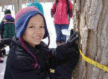 maple sugaring field trip